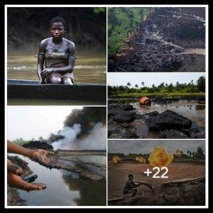 NIGER DELTA DEVASTATION COLLAGE